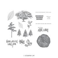 Puur Natuur Cling-Mount Stamp Set (Dutch)