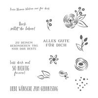 Alle Meine Geburtstagsgrüße Cling-Mount Stamp Set (German)