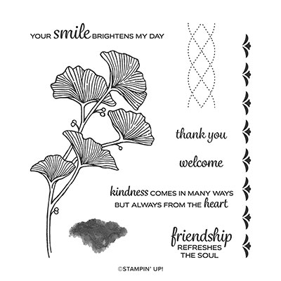 BEAUTIFULLY BRAIDED PHOTOPOLYMER STAMP SET (ENGLISH)