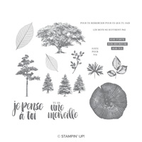 Racines De Vie Cling-Mount Stamp Set (French)