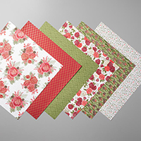 CHRISTMASTIME IS HERE SPECIALTY DESIGNER SERIES PAPER