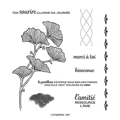 JOLIMENT TRESSÉ PHOTOPOLYMER STAMP SET (FRENCH)