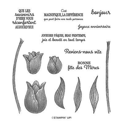 TULIPES INTEMPORELLES PHOTOPOLYMER STAMP SET (FRENCH)