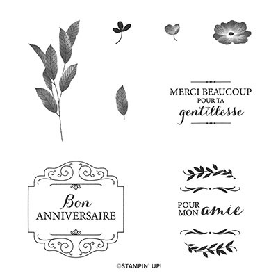 BORDÉ DE GENTILLESSE CLING STAMP SET (FRENCH)