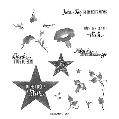 STARS UND STERNCHEN PHOTOPOLYMER STAMP SET (GERMAN)