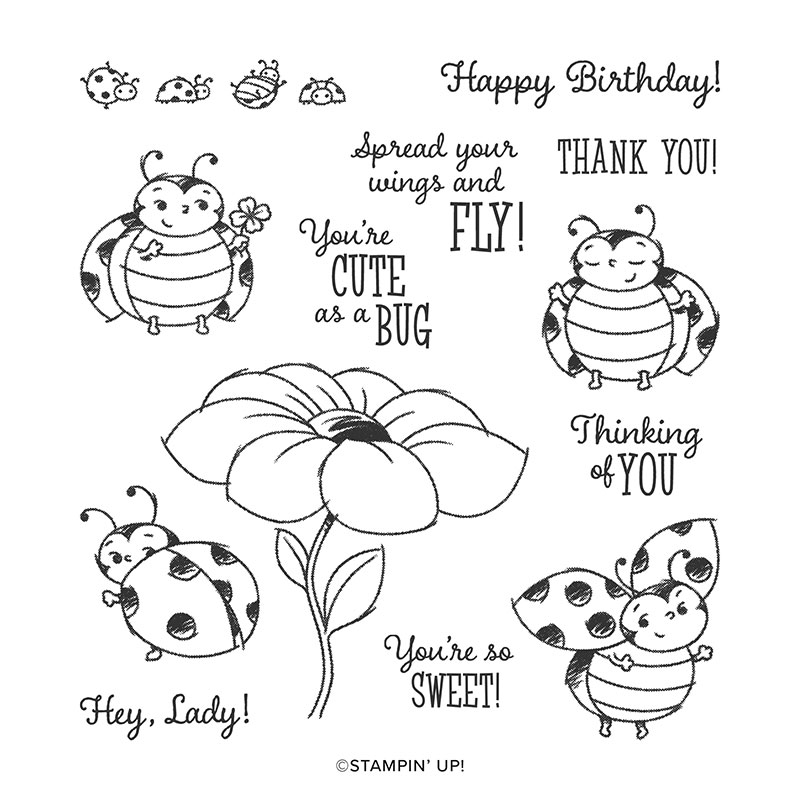 LITTLE LADYBUG HOST CLING STAMP SET