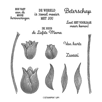 TIJDLOZE TULPEN PHOTOPOLYMER STAMP SET (DUTCH)
