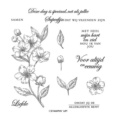 NIEUWE BLOESEMS CLING STAMP SET (DUTCH)