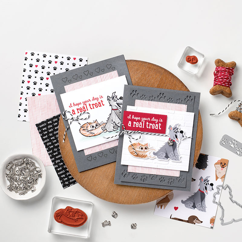 Playful Pets Suite - Playful Pets Simple Stamping and Stepped Up Cards