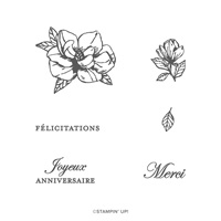 ÉCLOSION DE MAGNOLIAS PHOTOPOLYMER STAMP SET (FRENCH)