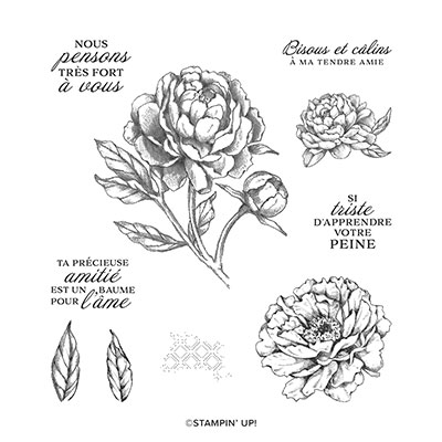 PIVOINE PENSIVE CLING STAMP SET (FRENCH)