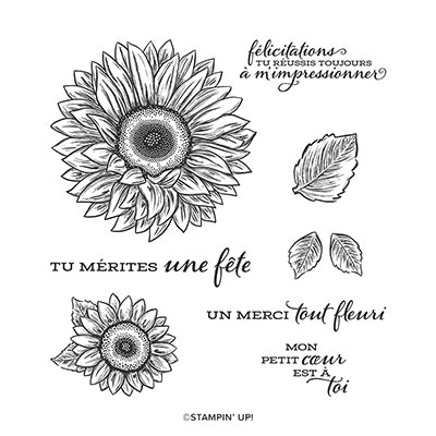TOURNESOLS EN FÊTE CLING STAMP SET (FRENCH)