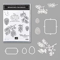 BRANCHES PAISIBLES BUNDLE (FR)