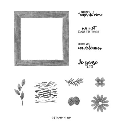 BIEN ENCADRÉ CLING STAMP SET (FRENCH)