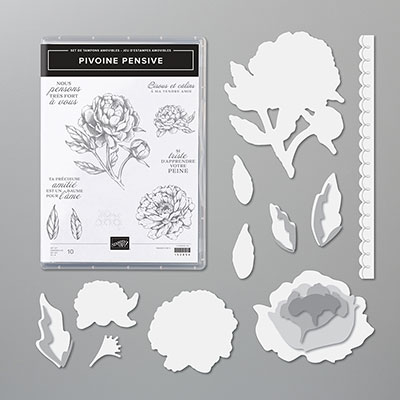 PIVOINE PENSIVE BUNDLE (FRENCH)