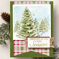 Winter Woods Cards