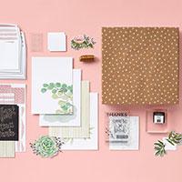 All-Inclusive Kits