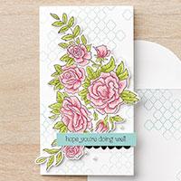 Spring/Summer Stamps